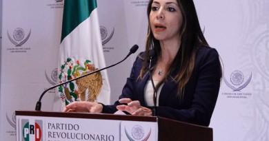 Yulma Rocha. diputada federal